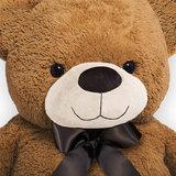 Teddybeer, 100cm, knuffel, knuffelbeer, bruin, met strik, pootafdruk, Valentijn_