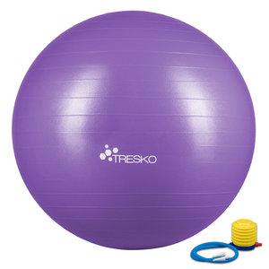Yogabal Paars 65 cm, Trainingsbal, Pilates, gymbal